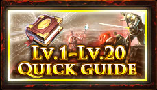 lv.1-lv.20 quick guide